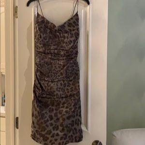 Gray leopard shimmer ruched Nicole Miller dress